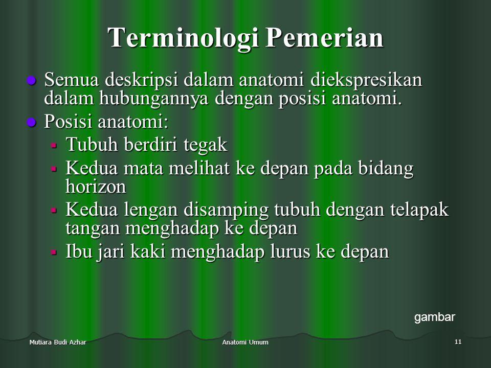 Terminologi Pemerian Semua deskripsi dalam anatomi diekspresikan dalam hubungannya dengan posisi anatomi.