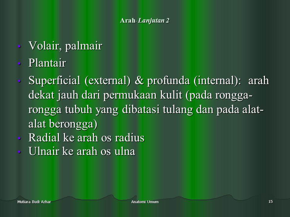 Radial ke arah os radius Ulnair ke arah os ulna