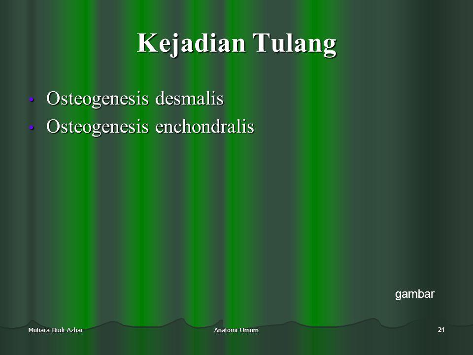 Kejadian Tulang Osteogenesis desmalis Osteogenesis enchondralis gambar