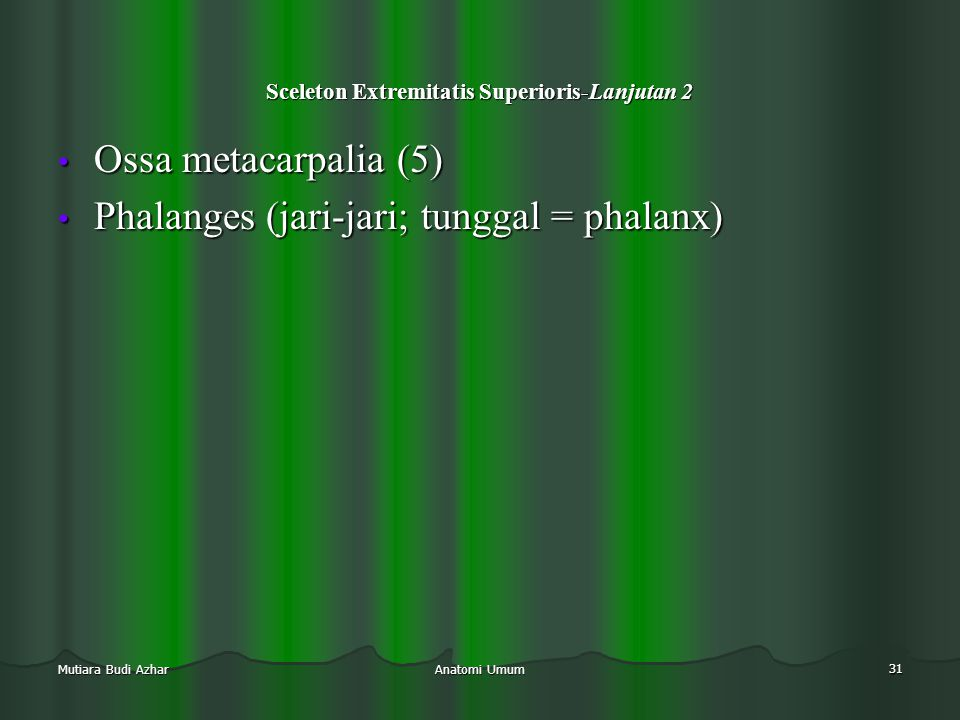 Sceleton Extremitatis Superioris-Lanjutan 2