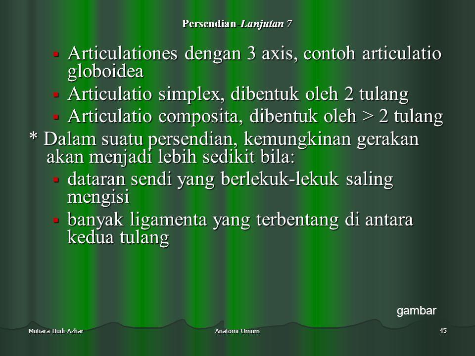 Articulationes dengan 3 axis, contoh articulatio globoidea