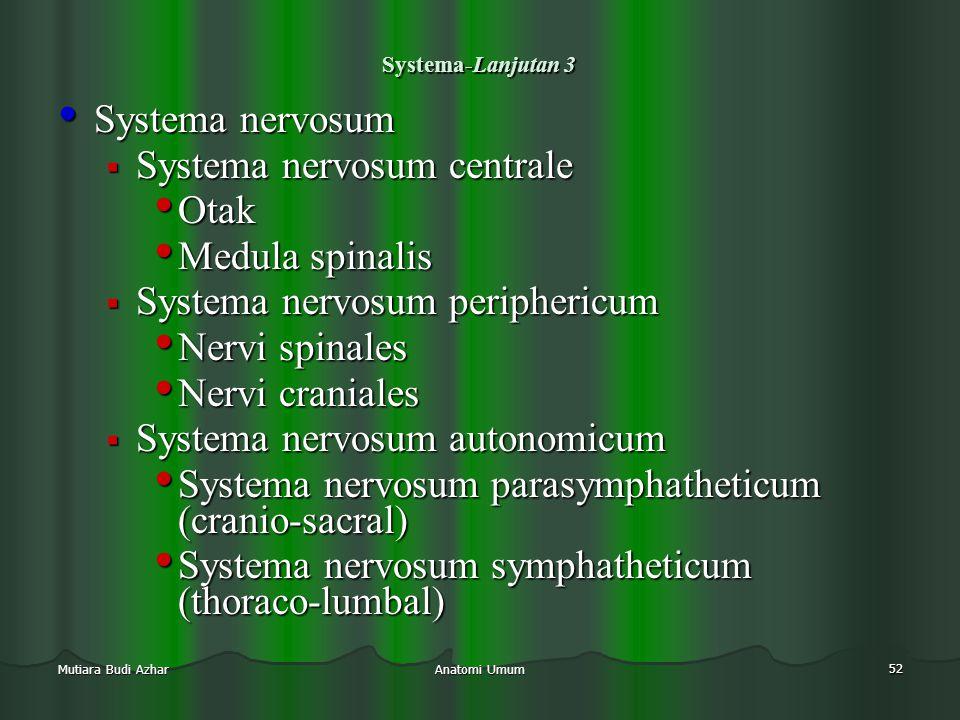 Systema nervosum centrale Otak Medula spinalis