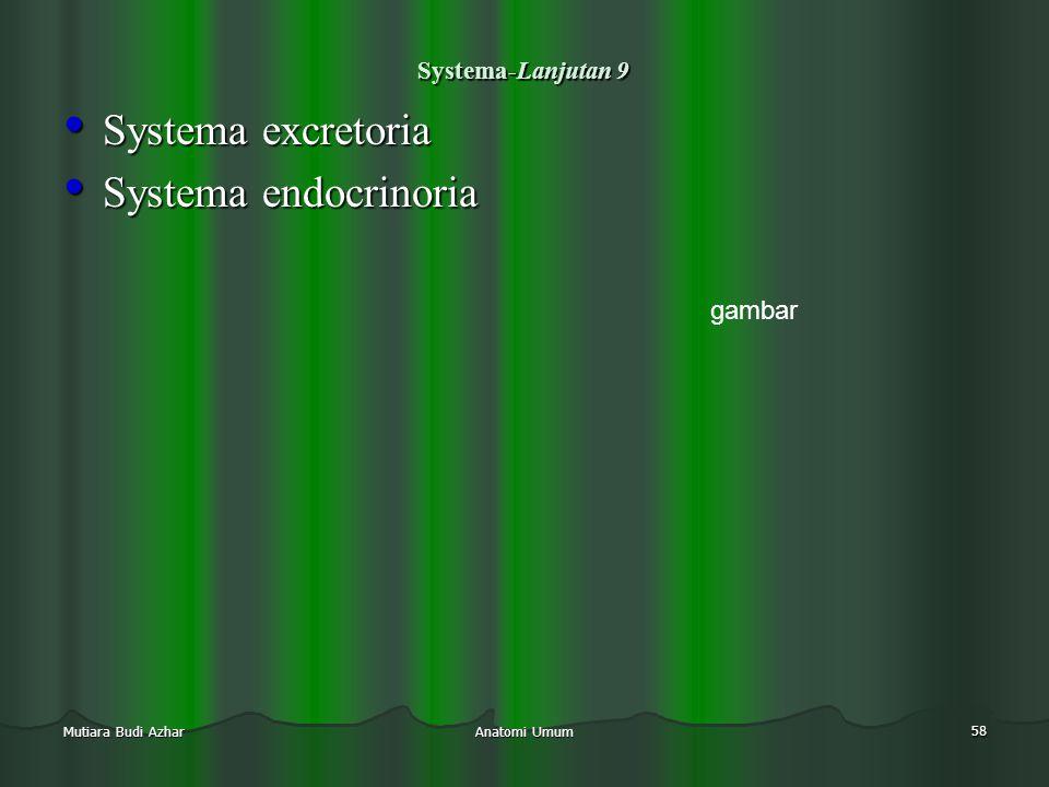 Systema excretoria Systema endocrinoria gambar Systema-Lanjutan 9
