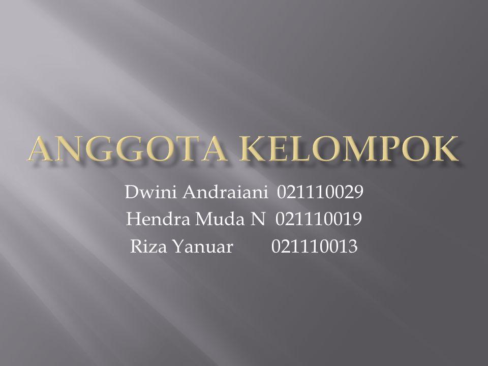 Anggota Kelompok Dwini Andraiani 021110029 Hendra Muda N 021110019