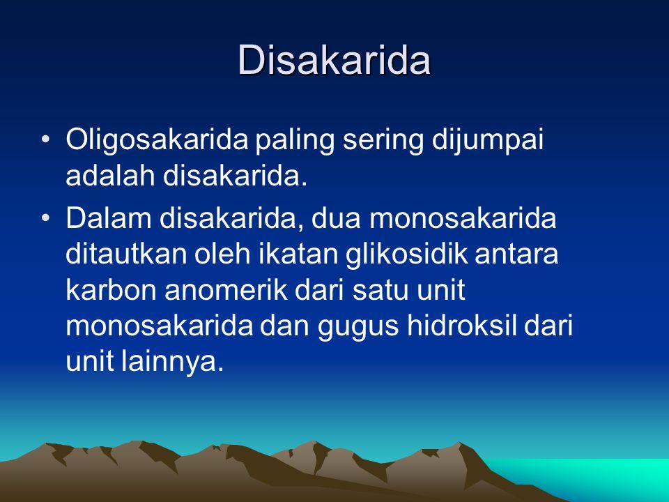 Disakarida Oligosakarida paling sering dijumpai adalah disakarida.