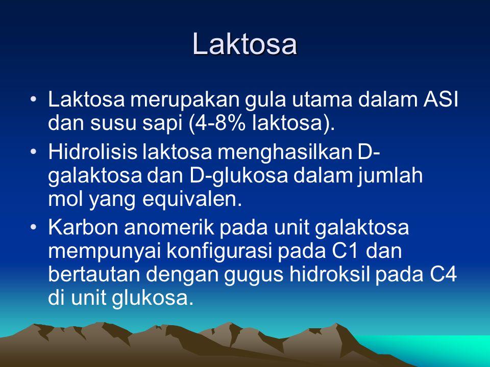 Laktosa Laktosa merupakan gula utama dalam ASI dan susu sapi (4-8% laktosa).