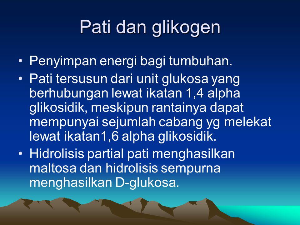 Pati dan glikogen Penyimpan energi bagi tumbuhan.