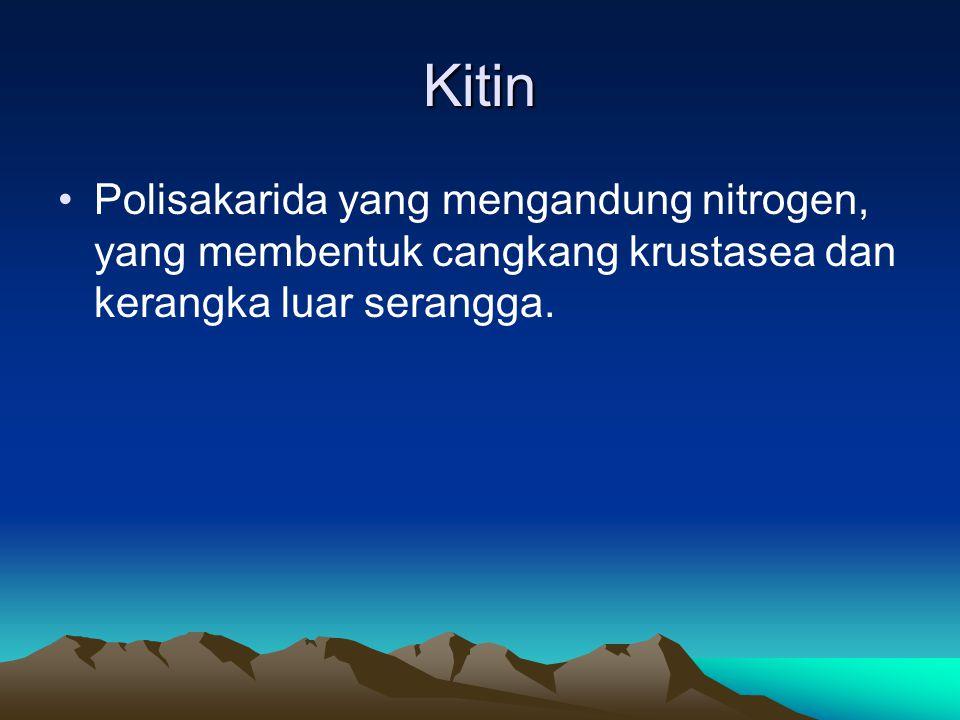 Kitin Polisakarida yang mengandung nitrogen, yang membentuk cangkang krustasea dan kerangka luar serangga.