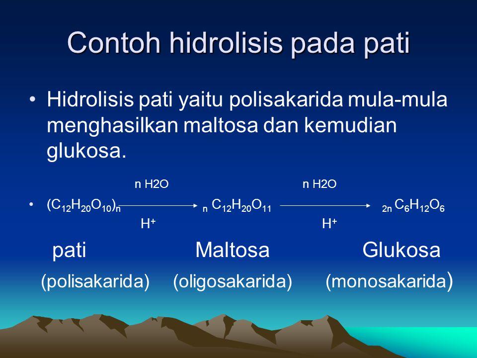 Contoh hidrolisis pada pati