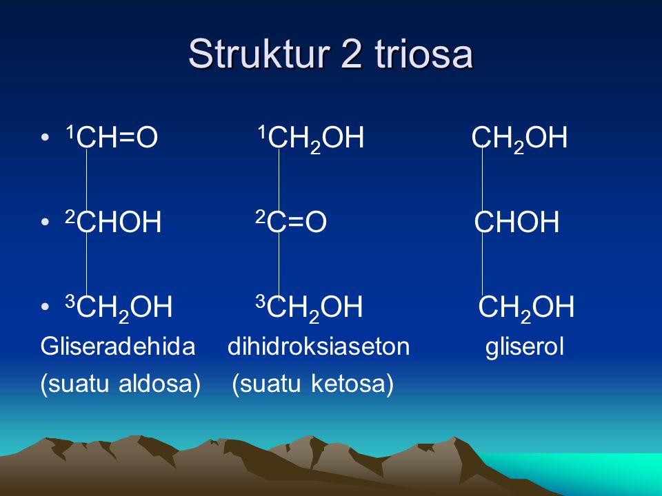 Struktur 2 triosa 1CH=O 1CH2OH CH2OH 2CHOH 2C=O CHOH