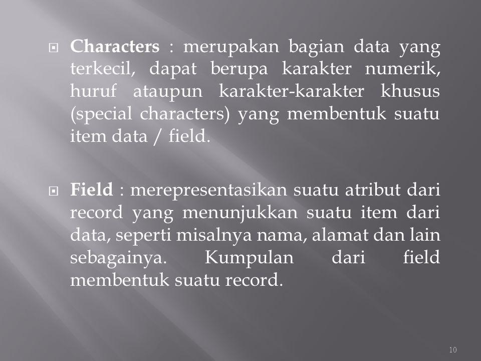 Characters : merupakan bagian data yang terkecil, dapat berupa karakter numerik, huruf ataupun karakter-karakter khusus (special characters) yang membentuk suatu item data / field.