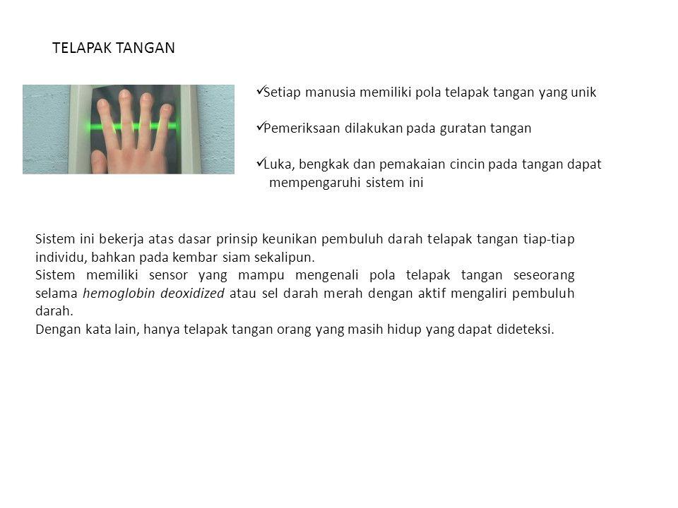 TELAPAK TANGAN Setiap manusia memiliki pola telapak tangan yang unik