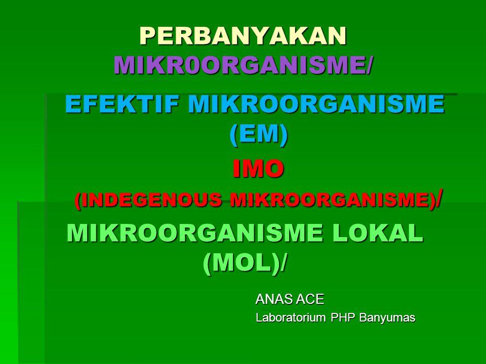 MIKROORGANISME LOKAL (MOL)/
