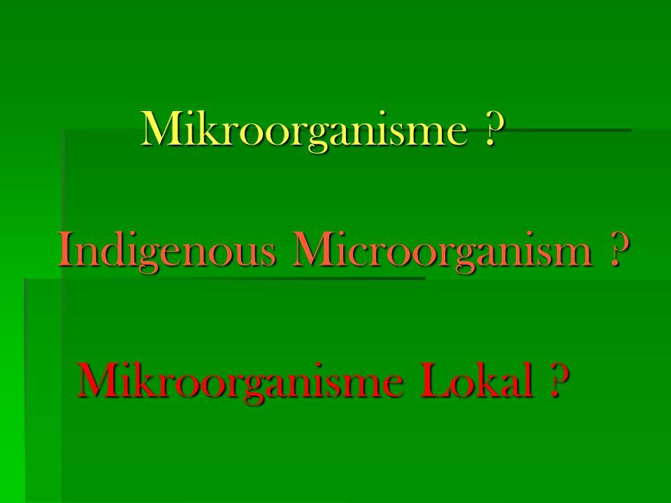 Indigenous Microorganism