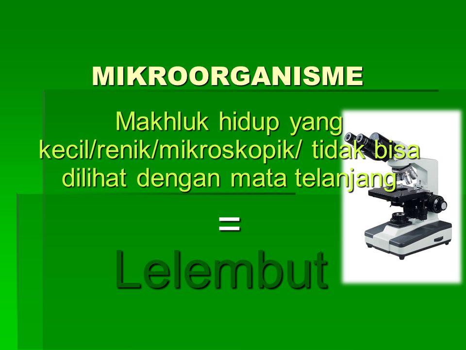 Lelembut = MIKROORGANISME