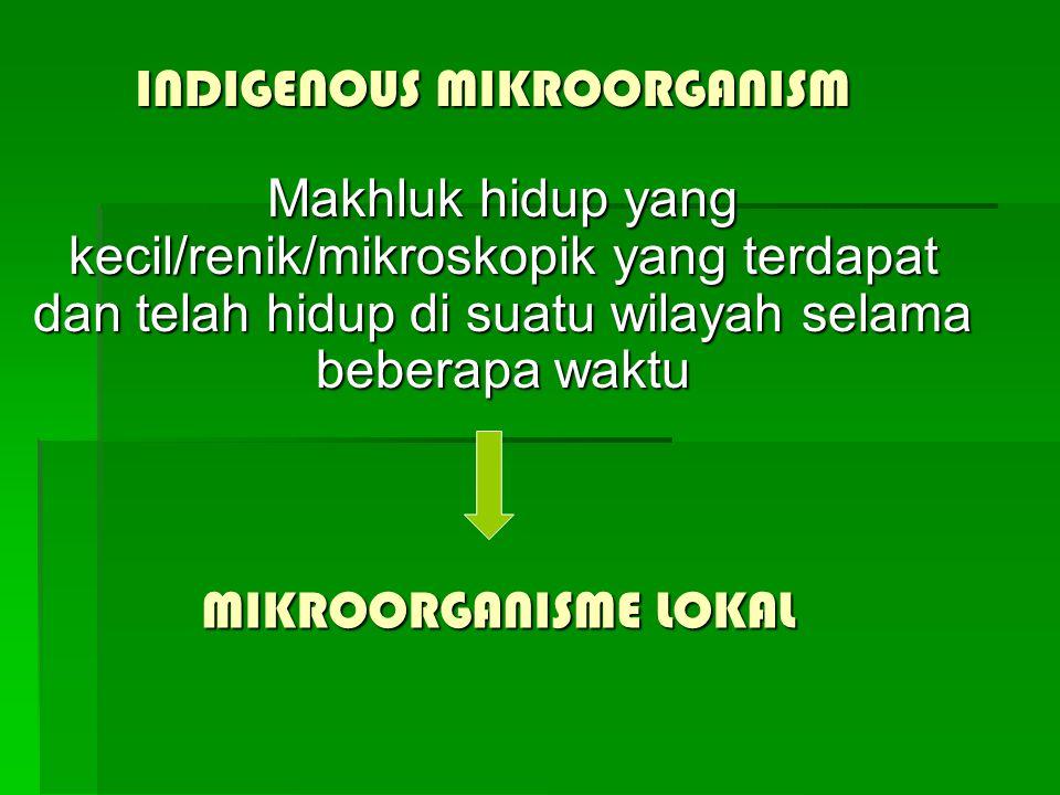 INDIGENOUS MIKROORGANISM