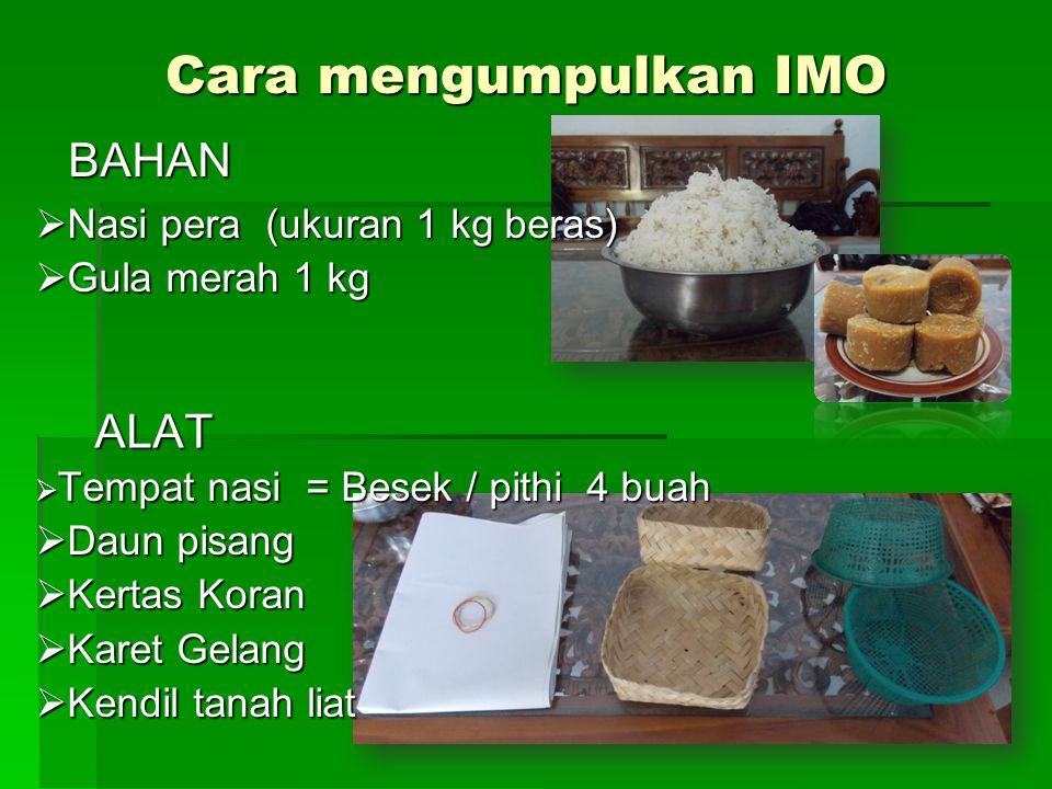 Nasi pera (ukuran 1 kg beras) Gula merah 1 kg