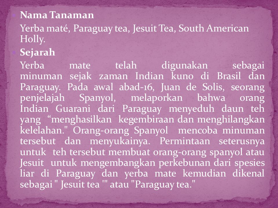 Nama Tanaman Yerba maté, Paraguay tea, Jesuit Tea, South American Holly. Sejarah.