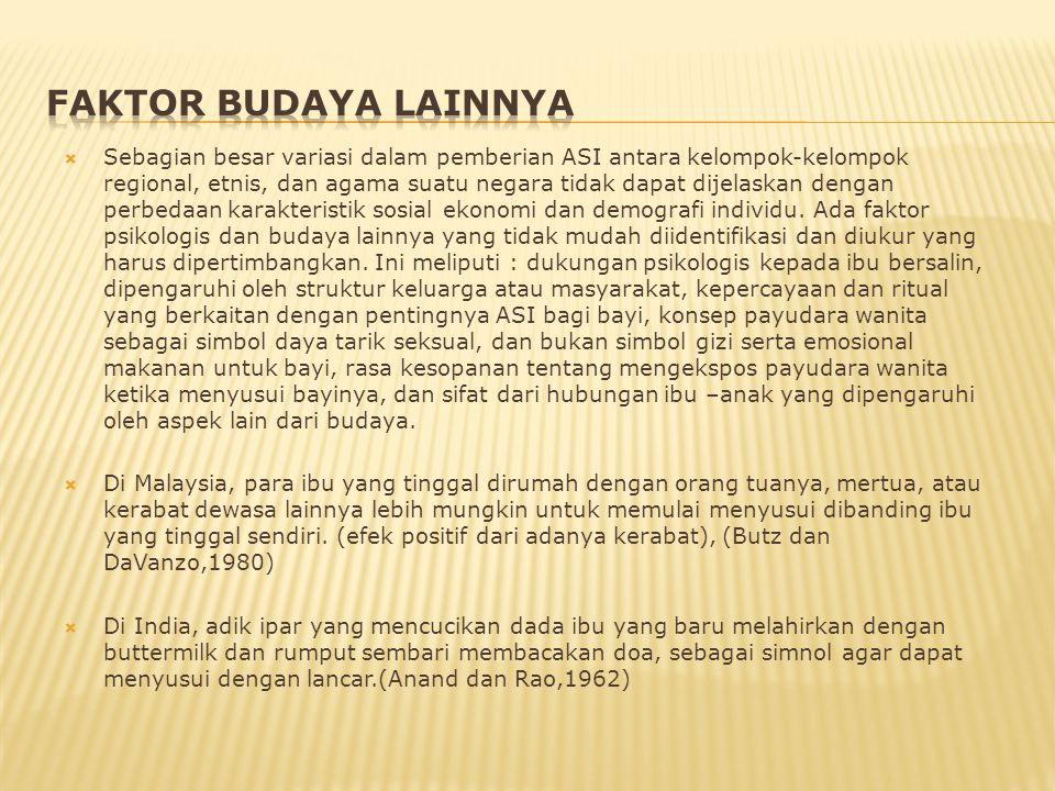 FAKTOR BUDAYA LAINNYA