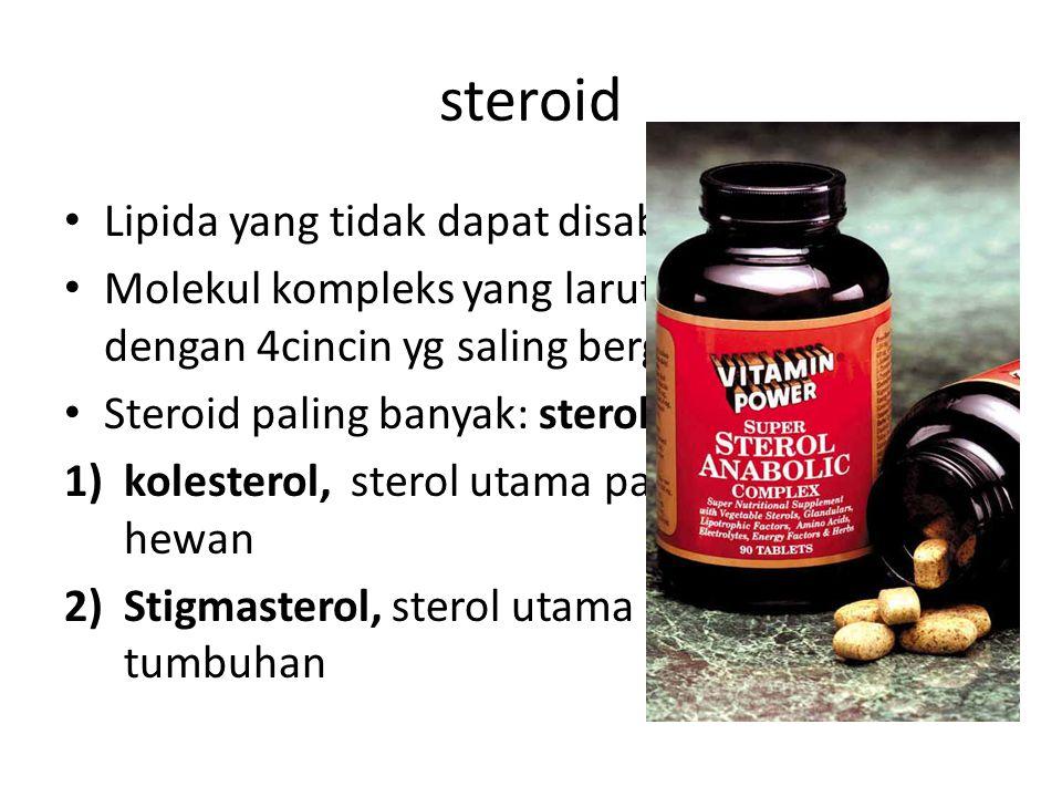 steroid Lipida yang tidak dapat disabunkan