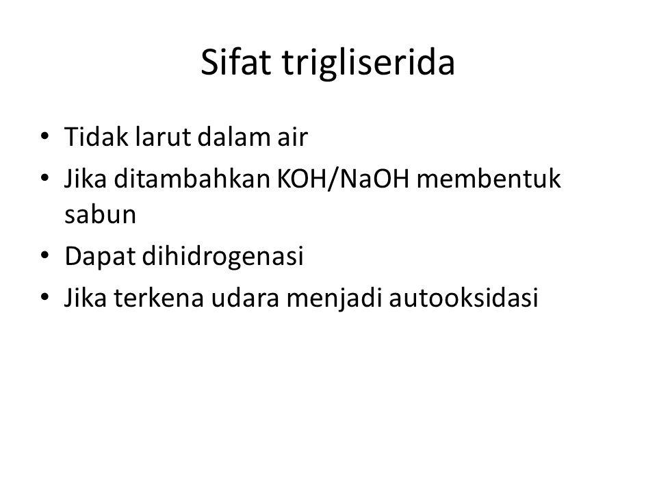 Sifat trigliserida Tidak larut dalam air