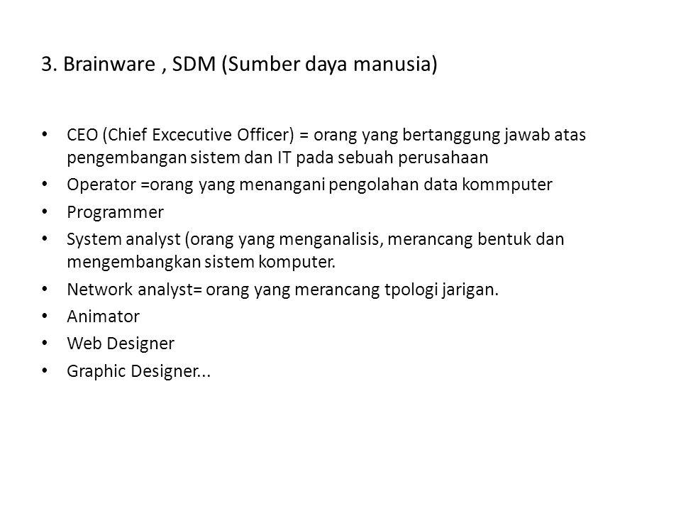 3. Brainware , SDM (Sumber daya manusia)