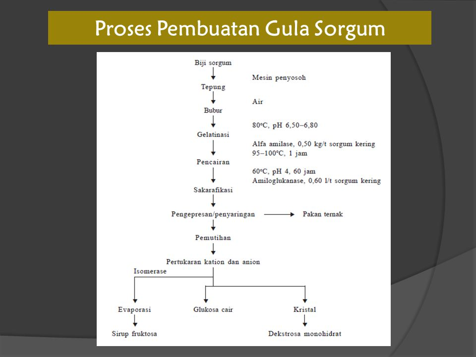 Proses Pembuatan Gula Sorgum