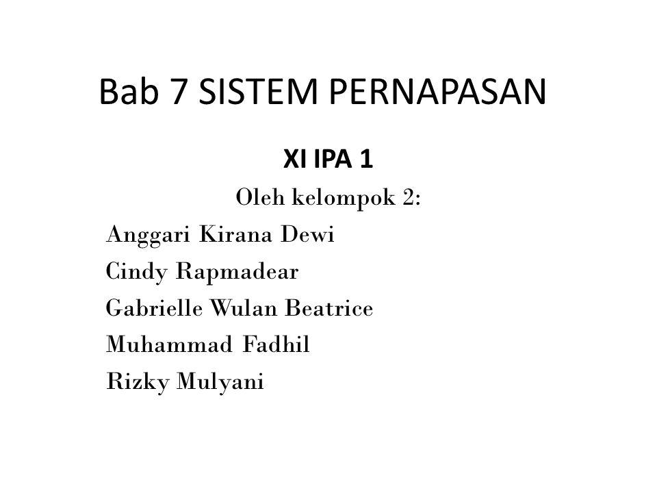 Bab 7 SISTEM PERNAPASAN XI IPA 1 Oleh kelompok 2: Anggari Kirana Dewi