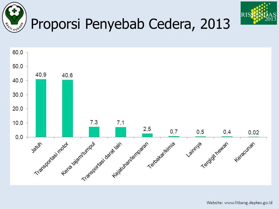 Proporsi Penyebab Cedera, 2013