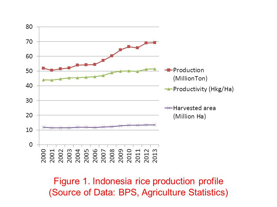 Figure 1. Indonesia rice production profile