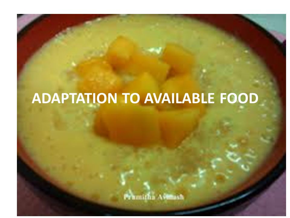 ADAPTATION TO AVAILABLE FOOD
