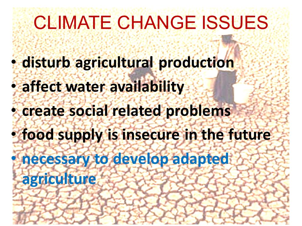CLIMATE CHANGE ISSUES disturb agricultural production