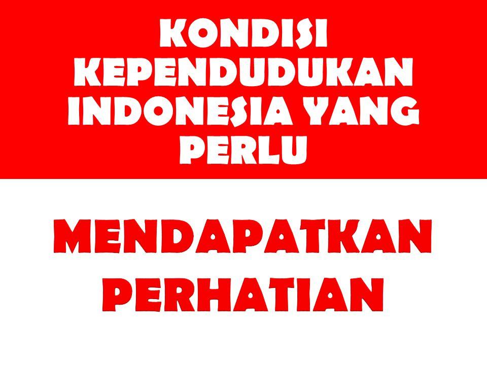 KONDISI KEPENDUDUKAN INDONESIA YANG PERLU MENDAPATKAN PERHATIAN