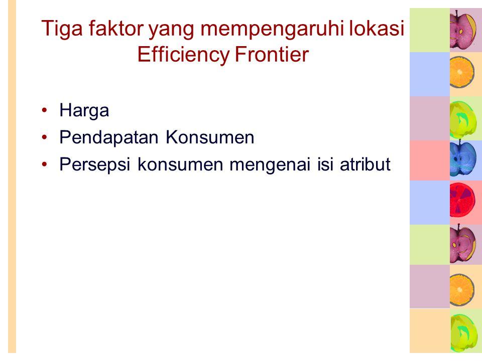 Tiga faktor yang mempengaruhi lokasi Efficiency Frontier