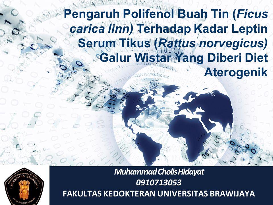 Muhammad Cholis Hidayat FAKULTAS KEDOKTERAN UNIVERSITAS BRAWIJAYA
