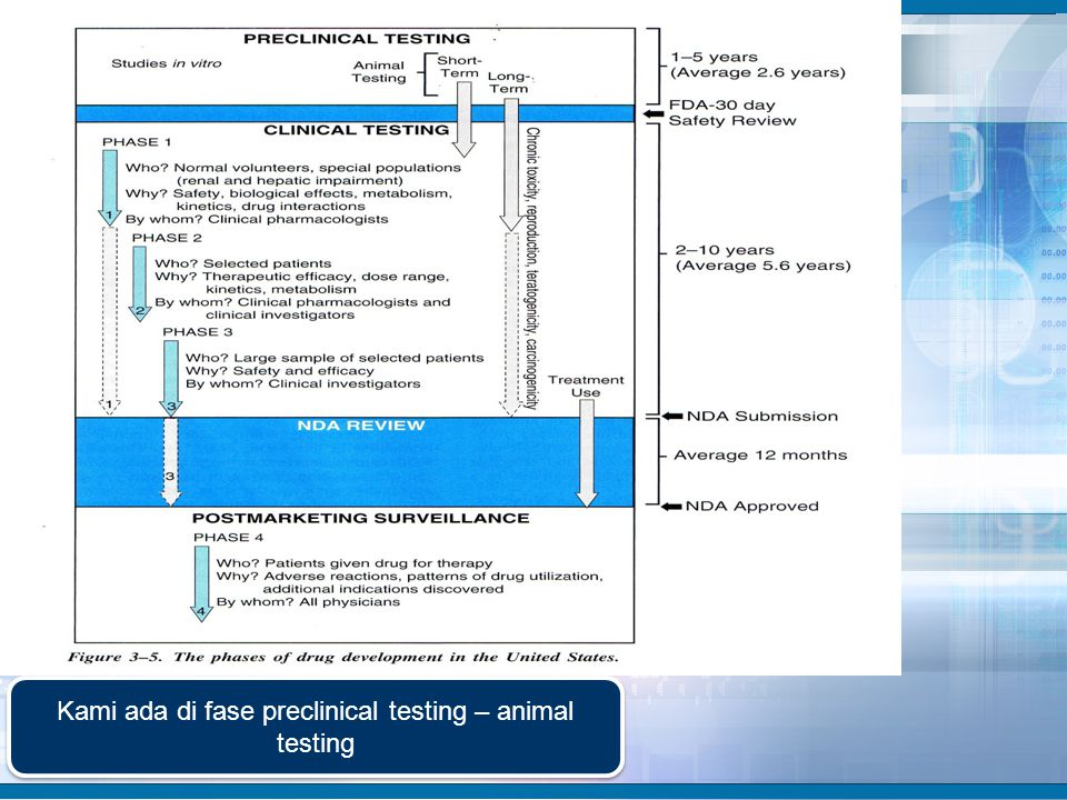 Kami ada di fase preclinical testing – animal testing