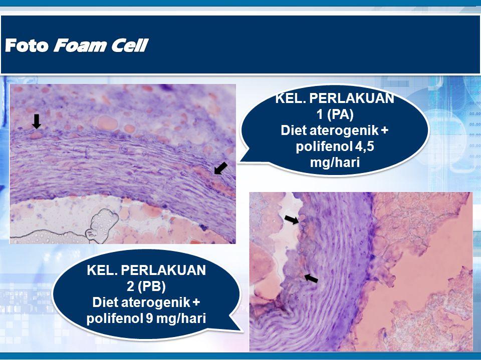 Foto Foam Cell KEL. PERLAKUAN 1 (PA)