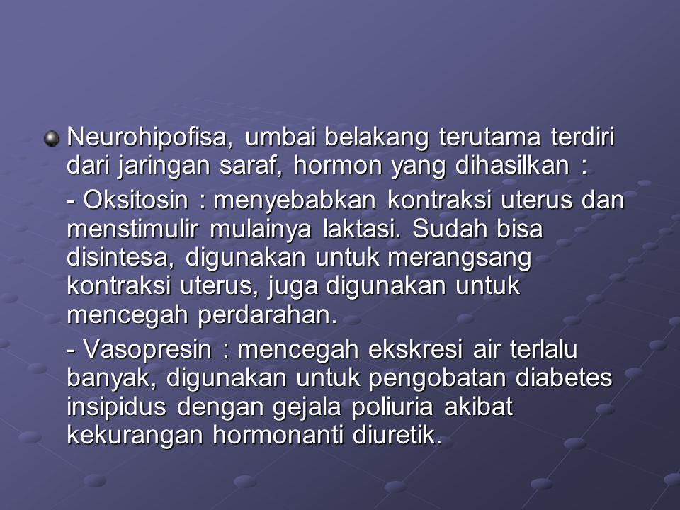 Neurohipofisa, umbai belakang terutama terdiri dari jaringan saraf, hormon yang dihasilkan :