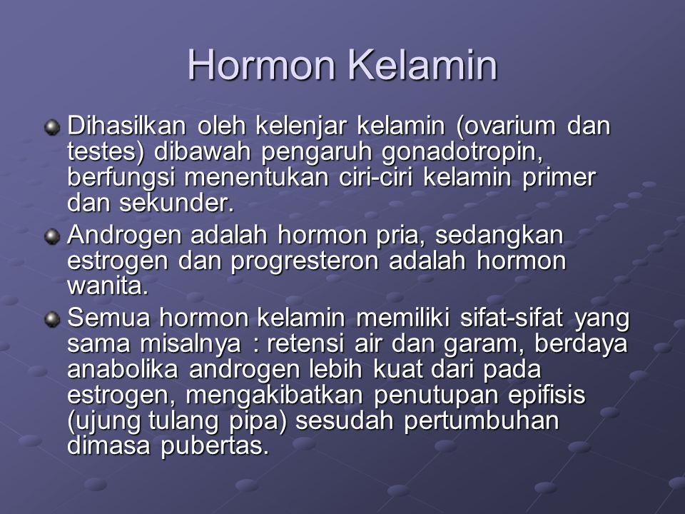 Hormon Kelamin