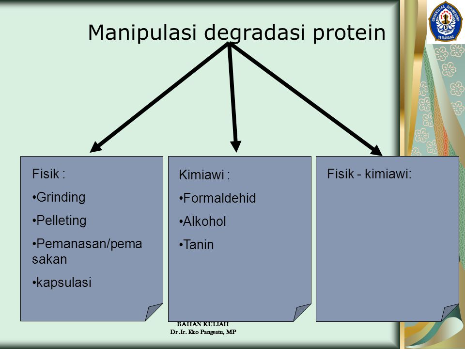Manipulasi degradasi protein