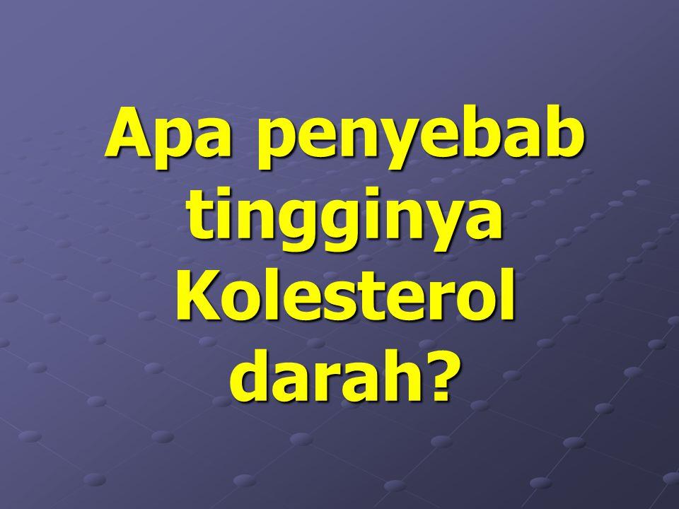 Apa penyebab tingginya Kolesterol darah