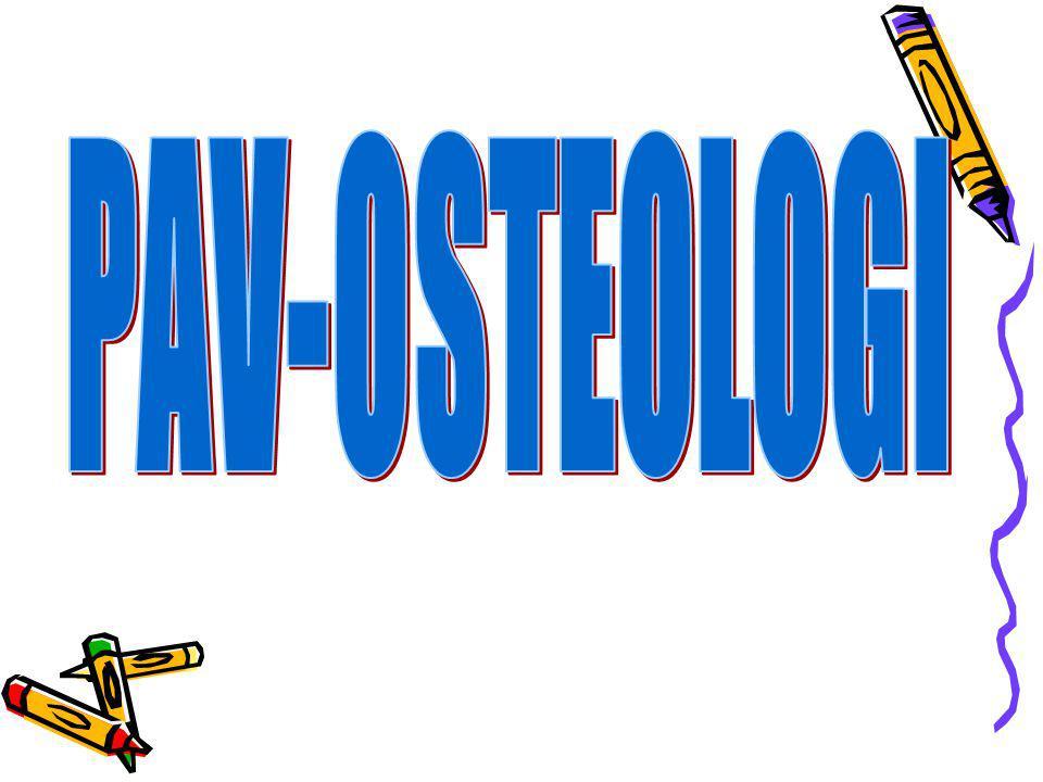 PAV-OSTEOLOGI
