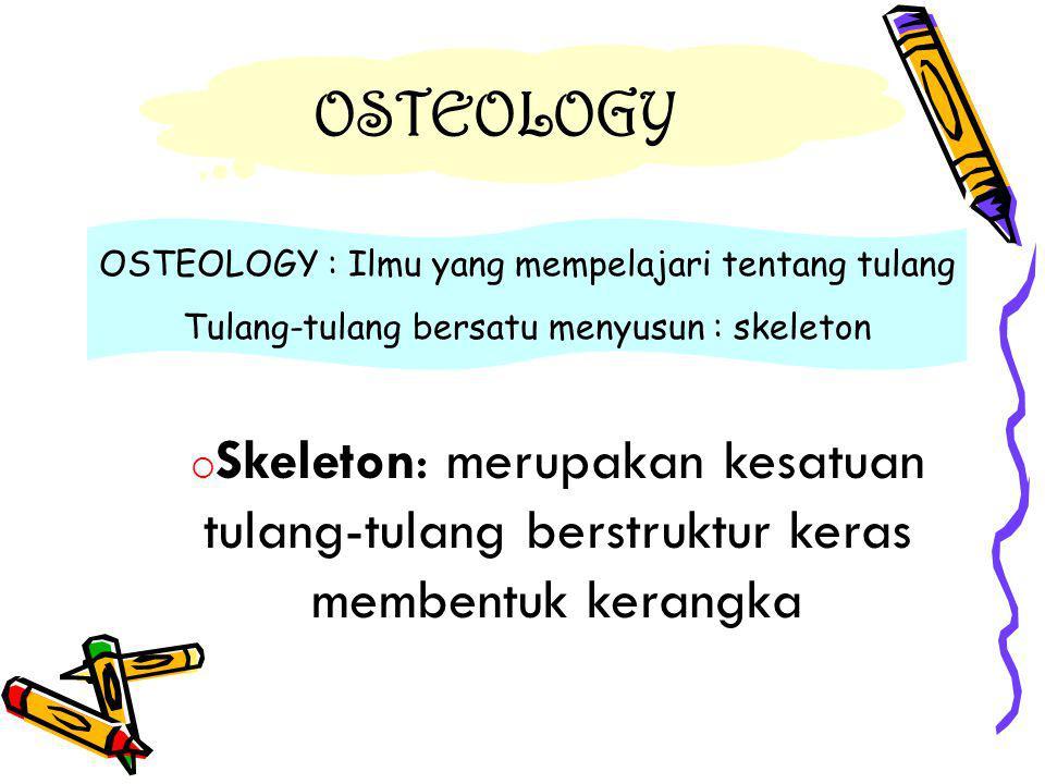 OSTEOLOGY OSTEOLOGY : Ilmu yang mempelajari tentang tulang. Tulang-tulang bersatu menyusun : skeleton.
