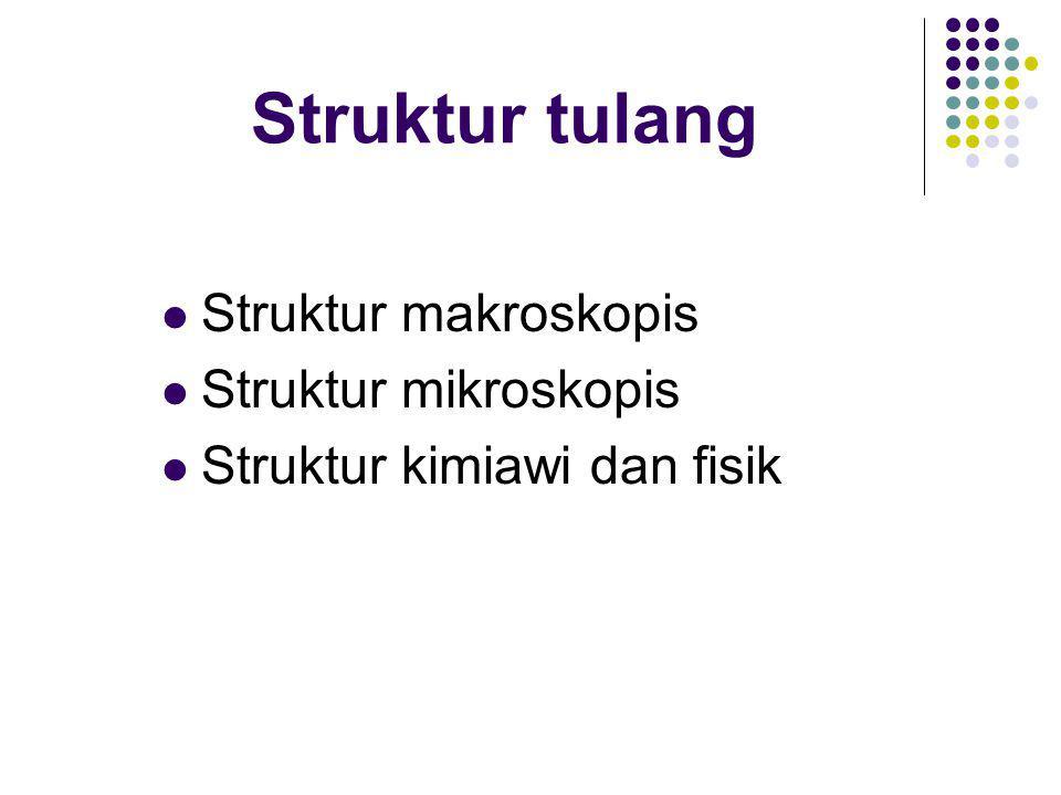 Struktur tulang Struktur makroskopis Struktur mikroskopis