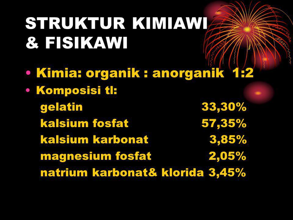 STRUKTUR KIMIAWI & FISIKAWI