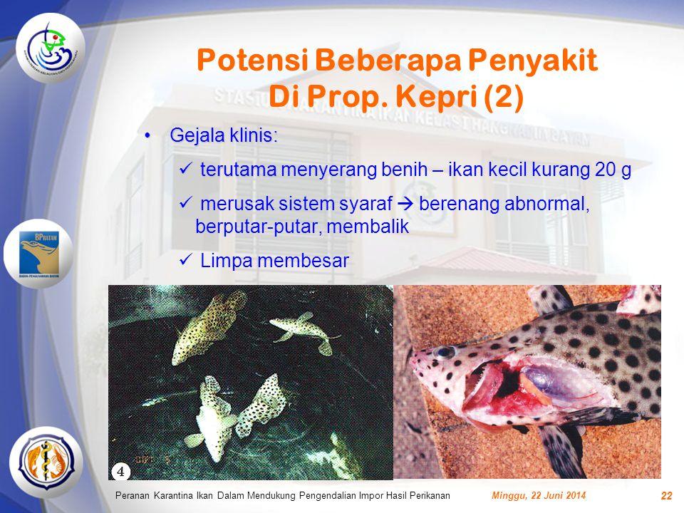 Potensi Beberapa Penyakit Di Prop. Kepri (2)