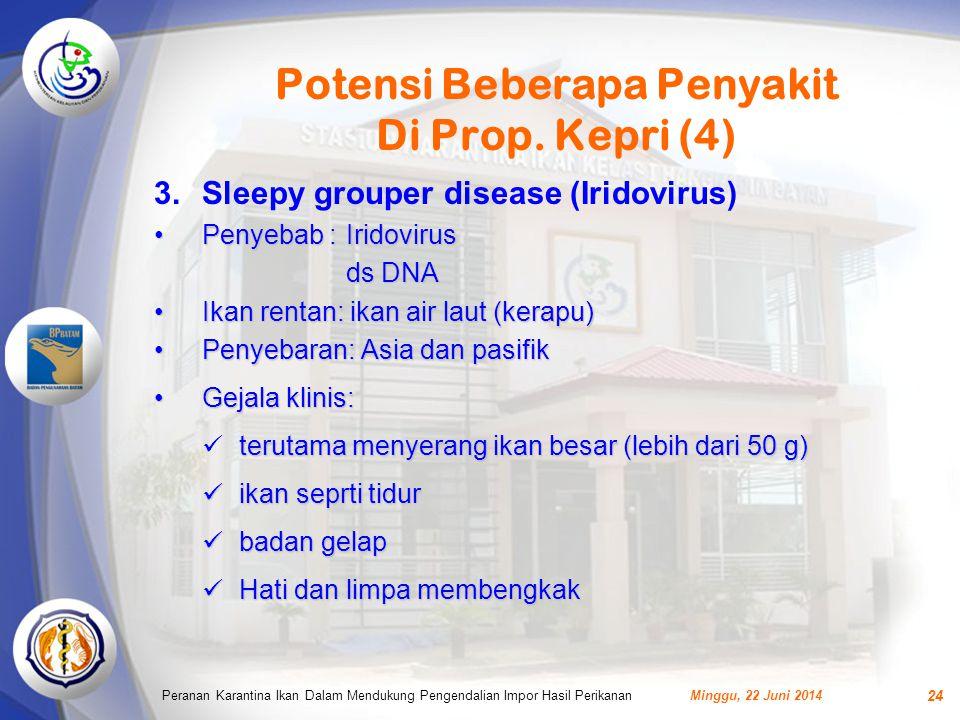 Potensi Beberapa Penyakit Di Prop. Kepri (4)