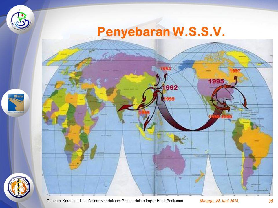 Penyebaran W.S.S.V. Peranan Karantina Ikan Dalam Mendukung Pengendalian Impor Hasil Perikanan.