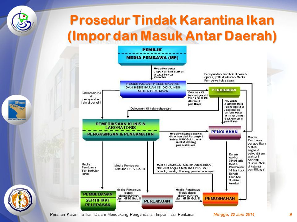 Prosedur Tindak Karantina Ikan (Impor dan Masuk Antar Daerah)