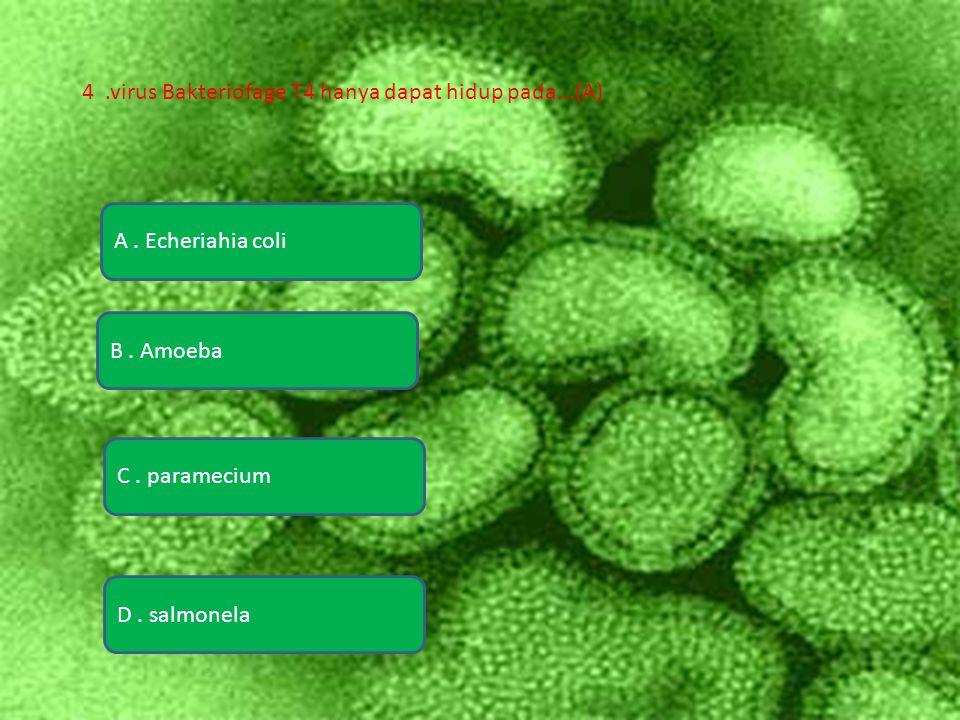 4 .virus Bakteriofage T4 hanya dapat hidup pada...(A)